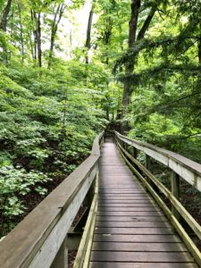 kortright Centre Trails in Woodbridge